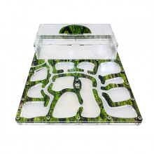 Комплект муравьиной фермы Премиум Древесный (зеленый) мох