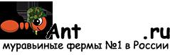 Муравьиные фермы AntFarms.ru